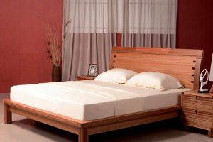 Giường Ngủ Gỗ BED009